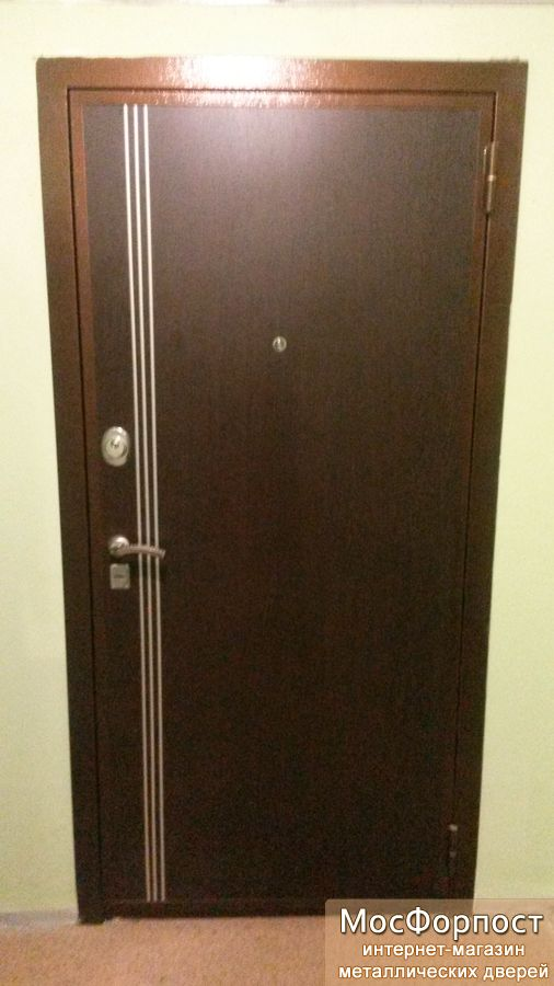 стальные двери монино
